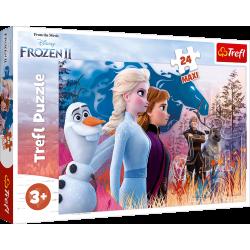 Puzzle Frozen II 14298